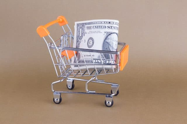 Why Investing in Dollar Stores is a Good Idea for the NNN Investor
